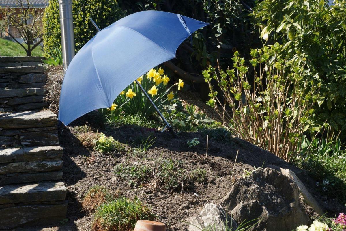 Protection repiquage fleurs